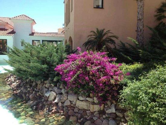 PortAventura Hotel PortAventura: )