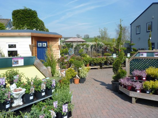 Hetland Garden Centre: Top Plant Area and Tea Garden