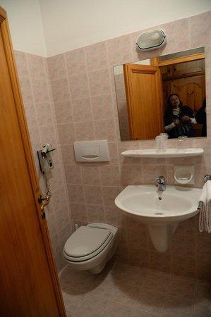 Hotel Pontejel: bathroom