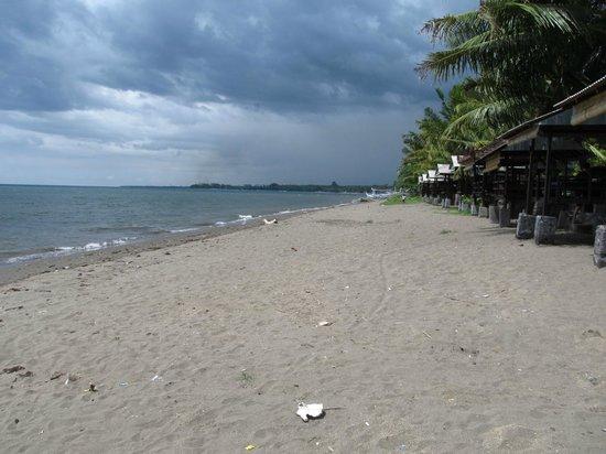 Lovina Beach : Dirty beach with trash