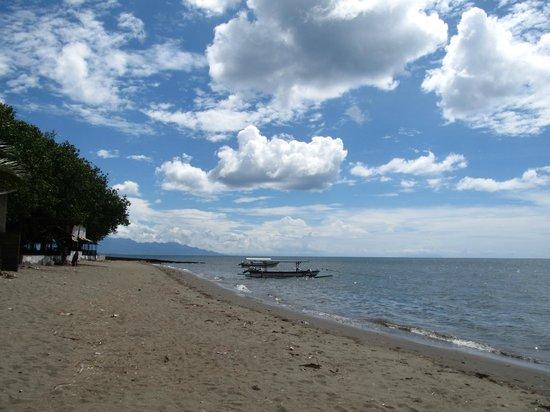 Lovina Beach : The beach