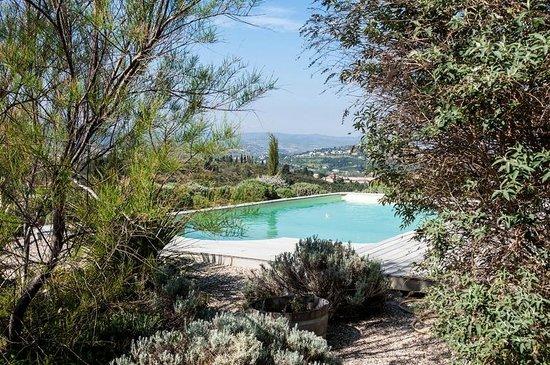 La Cortanela: Pool