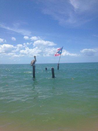 Rincon Beach Resort: Beach