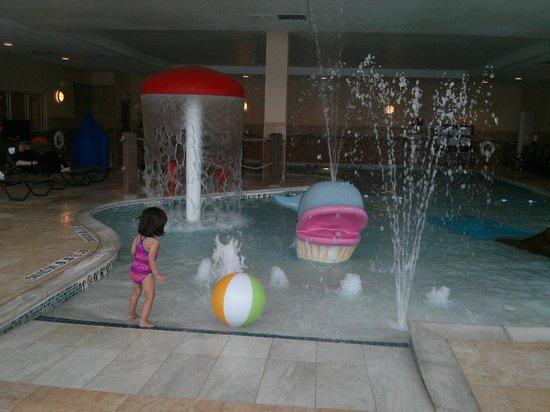 Hilton Garden Inn Ann Arbor: cool pool