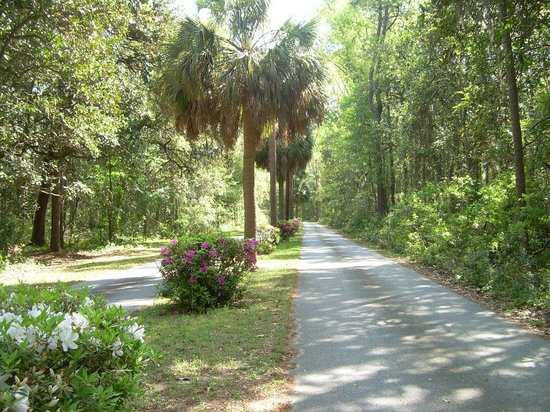 Oatland Island Wildlife Center: Driveway out