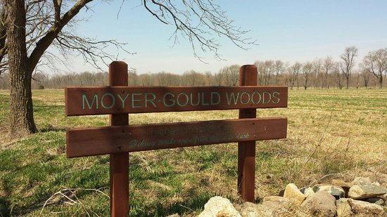 Moyer Gould Woods