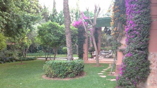 Dar Zemora : Side of Hotel