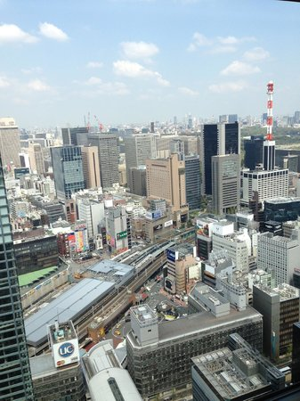 Royal Park Hotel The Shiodome, Tokyo: 部屋から新橋駅方面の眺め