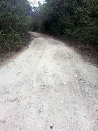 The Miserable Road to Green Beach