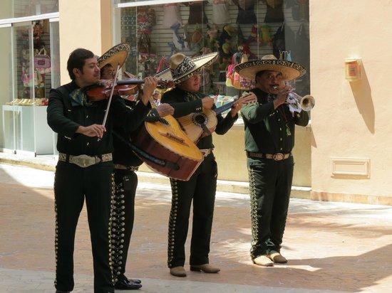 Señor Frog's: Mariachi Entertainment