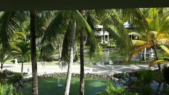 Paradisus Punta Cana : Love it