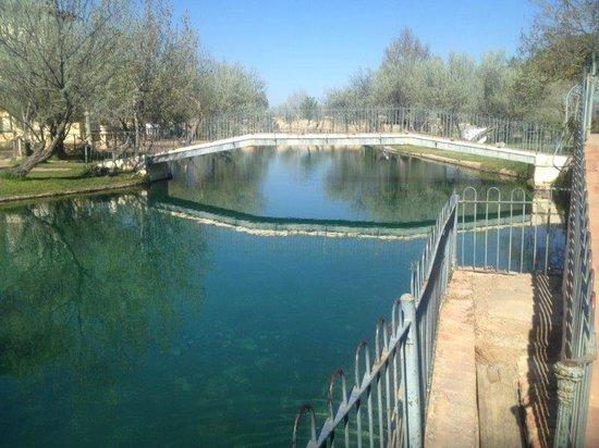 Parque Hotel: Lago termal: Una gozada