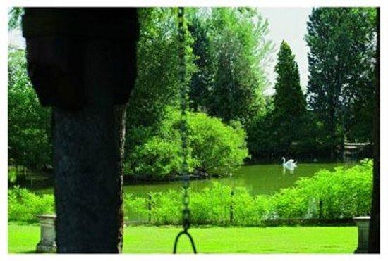 Corte al Lago: Visuale lago estate