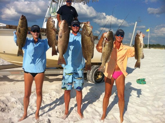 Captain Phil S Charters Grouper Fishing Grayton Beach