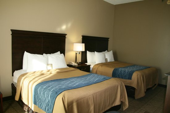 Comfort Inn & Suites Cookeville: Double Queen Guest Room