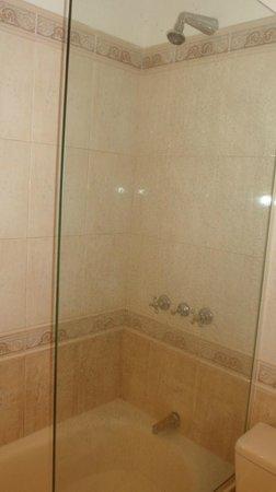 Ermitage Hotel: O chuveiro: O banheiro era ótimo! E o chuveiro muito bom!