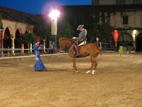 Espectaculo Pasion y Duende del Caballo Andaluz : Spettacolo
