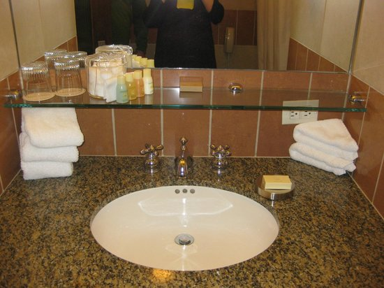 Hotel Giraffe: Bathroom