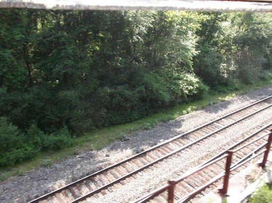 Lehigh Gorge Scenic Railway: THE THE LEHIGH GORGE STATE PARK