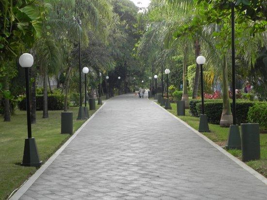 Hotel Riu Playacar : walkway from room to beach