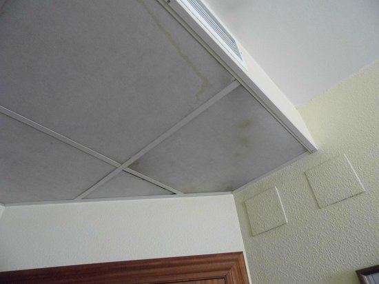 Hotel Averroes Mould On Bedroom Ceiling Tiles