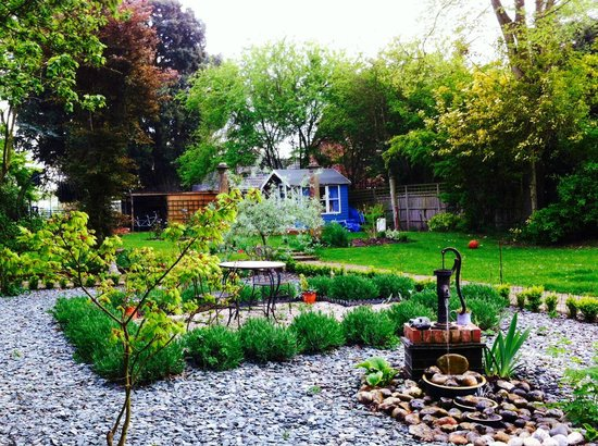 Chimneys B & B: The Lavender and Box Garden - great spot for Afternoon Tea