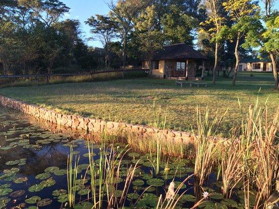Horizon Horseback Adventures Lodge: view of lakeside villa