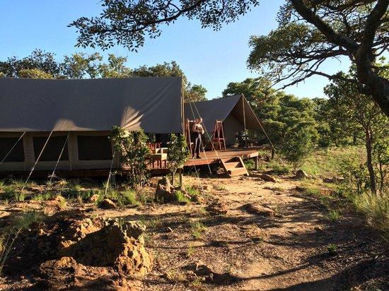 Horizon Horseback Adventures Lodge: camp davidson