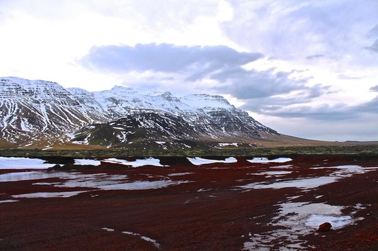 Goecco Expeditions and Tours : Lava field in Snæfellsnes Penninsula