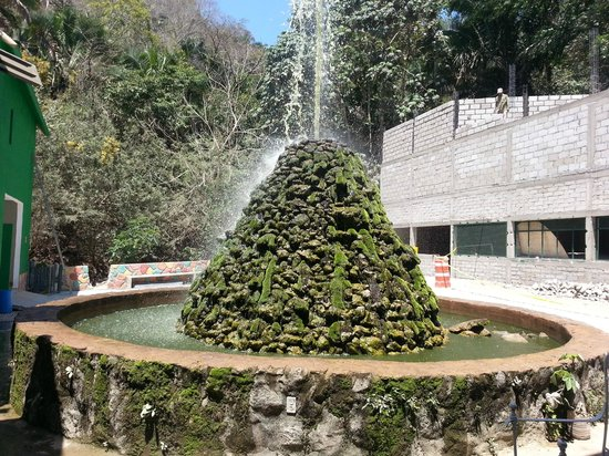 "Vallarta Zoo: The infamous ""green water fountain"""