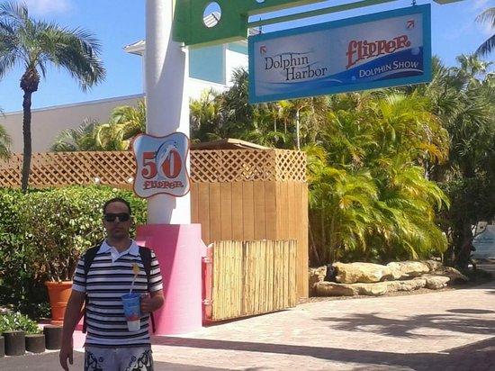 Miami Seaquarium: Entrada do Aquario onde é apresentado a atração do Flipper