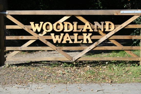 Woodland Walk at Aldingbourne Country Centre