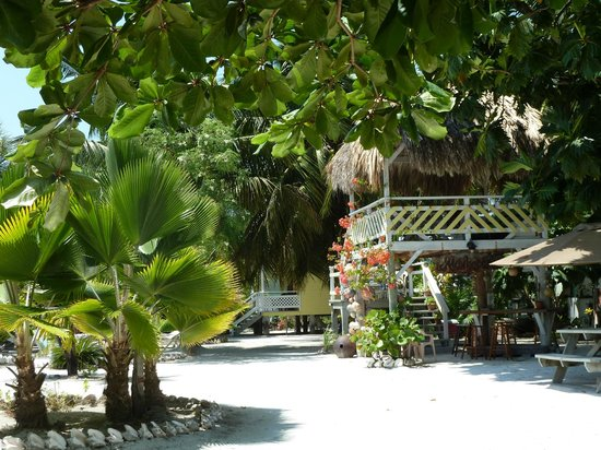 Maxhapan Cabanas: Central Palapa