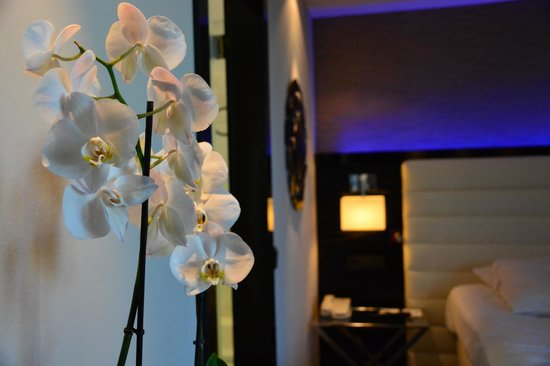 Hotel Palace Berlin : fresh flowers in the rooms