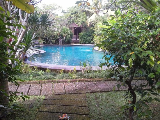 Arjana Bungalows 2: Pool and garden