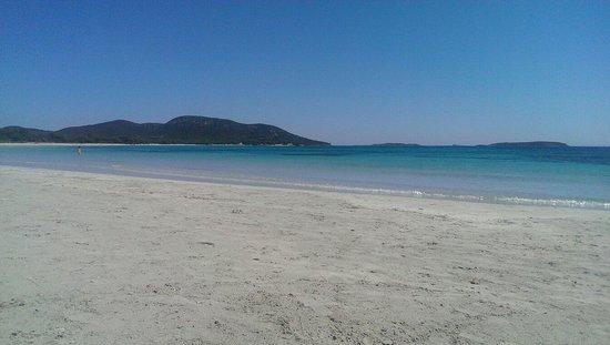 Plage de Palombaggia: Beach