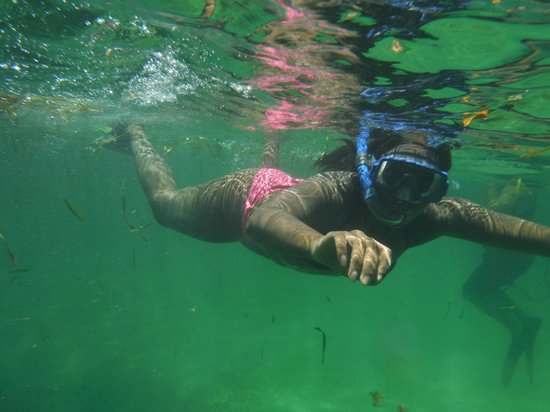 Chad4Nature Tours - Private Tours : Snorkeling