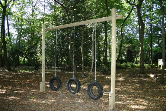 Aldingbourne Country Centre: Tyre swings for little and big kids