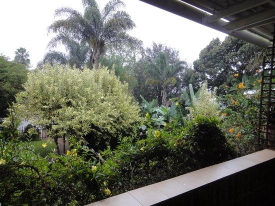 Villa Ticino Guest House : Idyllischer Garten
