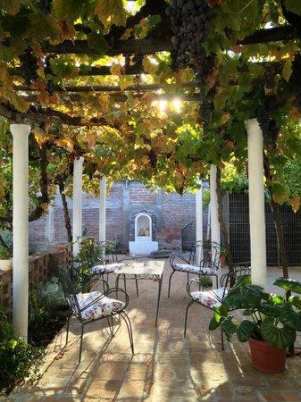 Hostal Petit Verdot: View of Courtyard