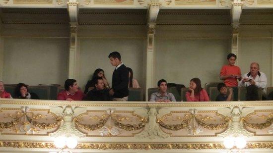 Semper Opera House (Semperoper): palcos
