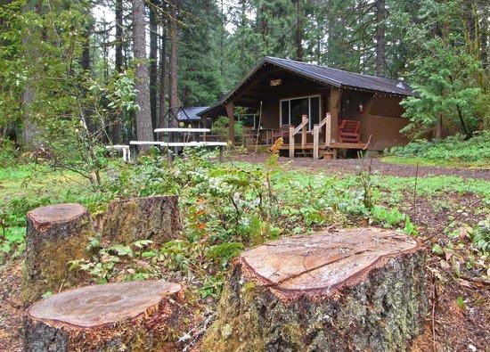 Horse Creek Lodge & Outfitters: Koosah cabin