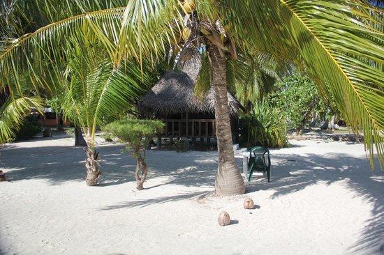 Aito Motel Colette: Notre fare sur la plage comme tout les autres
