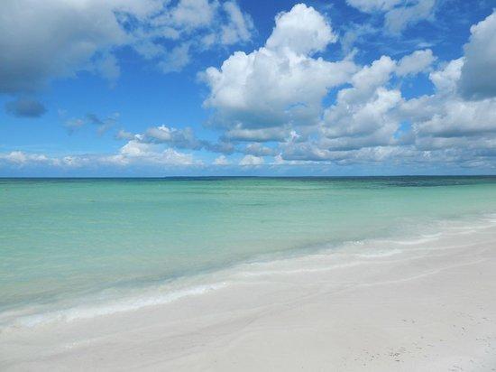 Samaki Lodge & Spa: Pláž