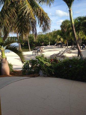 Hampton Inn Key Largo: View from room 151