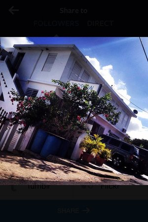 Tropical Guest House™ #gem