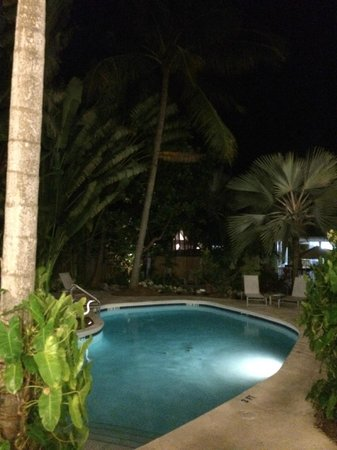 The Paradise Inn: Swimming pool