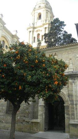 Malaga Cathedral : 3