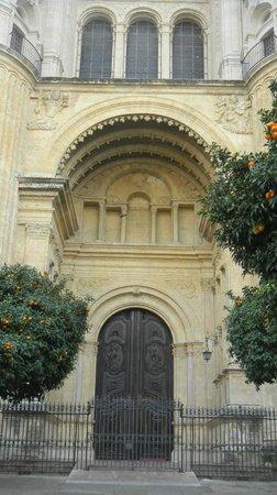 Malaga Cathedral : 2