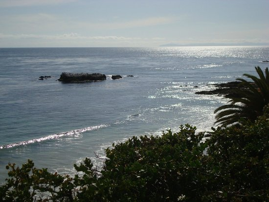 Heisler Park: birds rock